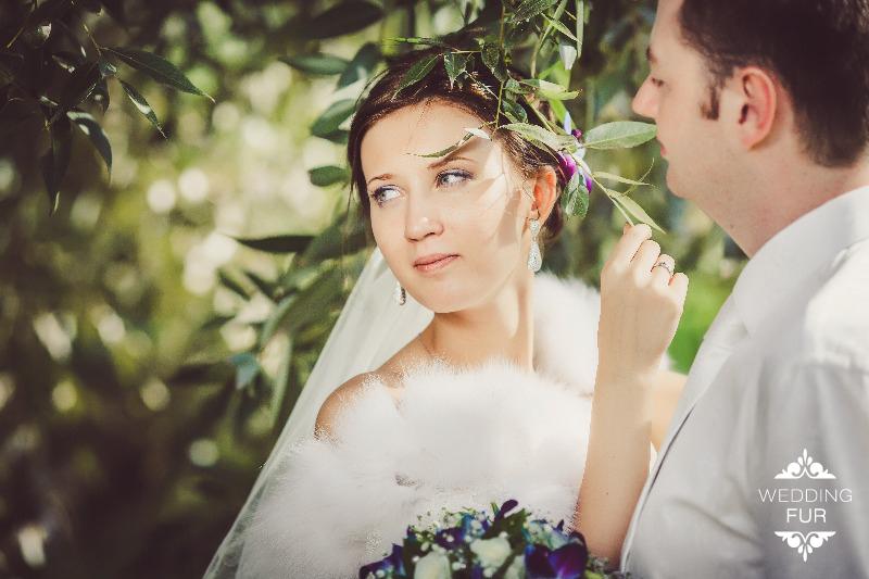 Накидки шубки горжетки пелерины свадебная накидка напрокат купить Москва Wedding Fur